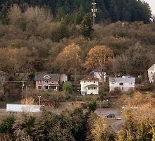 A Neighborhood on the Hill by Shirley Tyler-Bowman