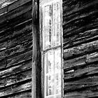 Tall, Skinny Window by shimschoot