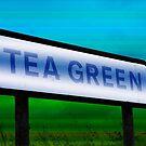 Tea Green by Paul  Green