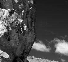 Guardian Rock, Bogus Basin Road near Boise ID by Eric Anderson