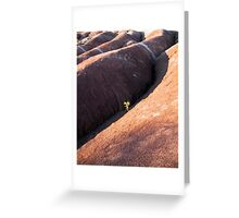 Singled Out Greeting Card
