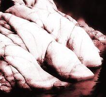 Dinosaur Feet by infiniteartfoto