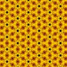 Sunflower Circles by incurablehippie
