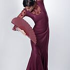 Flamenco dancer 2 by Aleksandar Topalovic