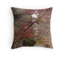 November Drive Throw Pillow
