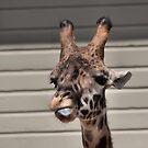 Rude Giraffe by SuddenJim