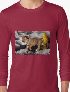 ☀ ツ UP IN THE CLOUDS WHAT DO I SEE A FIRE HYDRANT JUST WAITING FOR ME (SENDING EMAIL)CARD/PICTURE☀ ツ Long Sleeve T-Shirt