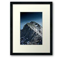 2917 Framed Print