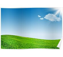 Blue sky and green grassland Poster