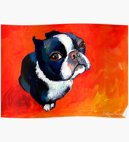 Boston Terrier dog #1 painting Svetlana Novikova Poster
