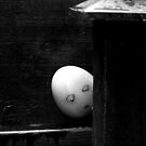 The Unnecessarily Suspicious Egg by Luke Stevens