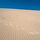 Footprints by Werner Padarin