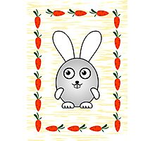 Little Cute Bunny Photographic Print