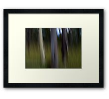 The Elders Framed Print