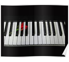 Rose Piano Poster
