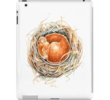 Mouse in the nest iPad Case/Skin