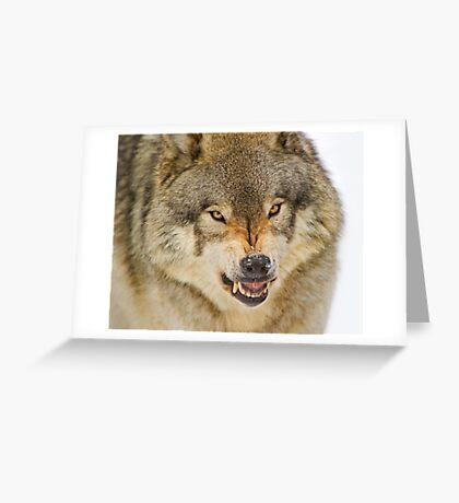 Temper! Greeting Card