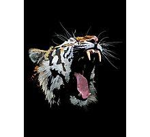 Angry Tiger Photographic Print