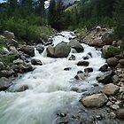 Mountain Stream by Richard Williams