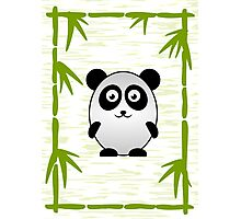 Little Cute Panda Photographic Print