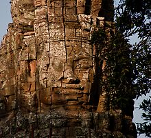 Buddha Everywhere by phil decocco