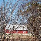 Little Red Barn on Slasham Road by Charldia