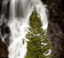 Fish Creek Falls by David Michael Webb