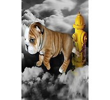 ☀ ツ UP IN THE CLOUDS WHAT DO I SEE A FIRE HYDRANT JUST WAITING FOR ME (SENDING EMAIL) IPHONE CASE☀ ツ  by ✿✿ Bonita ✿✿ ђєℓℓσ