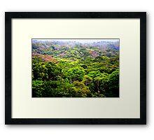 Okinawa Jungle Framed Print