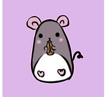 Cute Mouse Photographic Print