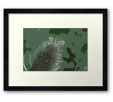 A Lesson In Camouflage Framed Print