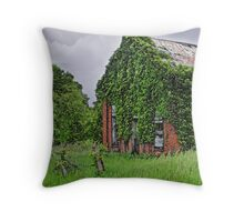 Somewhere in Ohio Throw Pillow