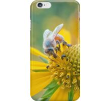 Honey Business iPhone Case/Skin