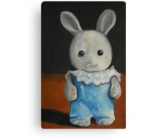 Anj used to carry this bunny in her pocket. Canvas Print