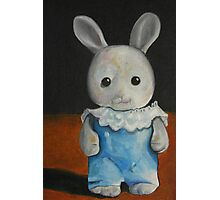 Anj used to carry this bunny in her pocket. Photographic Print