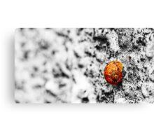 Snail on Render Canvas Print