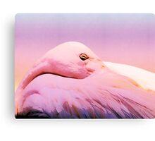 Sleepy flamingo- pretty in pink Canvas Print