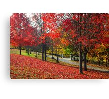 New England Autumn  Canvas Print