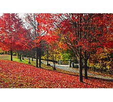 New England Autumn  Photographic Print