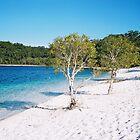 Frazer Island lake by victoriana