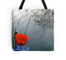 Red over blue in Regents Park Tote Bag