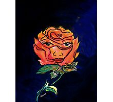 Every Rose has its Thorns... Photographic Print