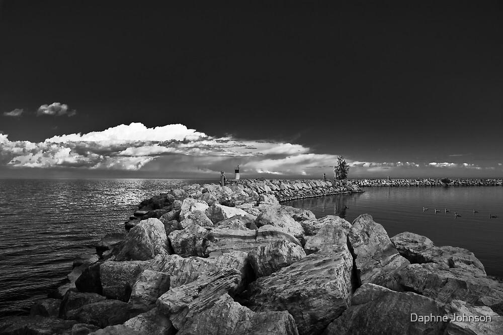 Jordan Harbour Breakwater B&W by Daphne Johnson