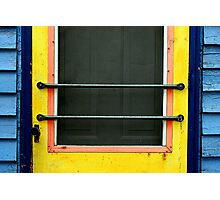 simply a door Photographic Print