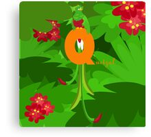 q for quetzal Canvas Print