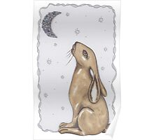 Mr Rabbit and The Moon Poster