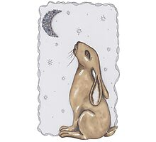 Mr Rabbit and The Moon Photographic Print