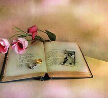 Broken Dreams ! by Irene  Burdell