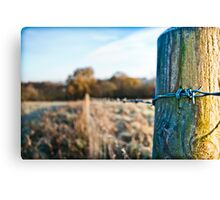 Icy Wire - Little Kingshill Canvas Print