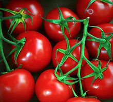 Dinan Tomatoes by Liz Garnett